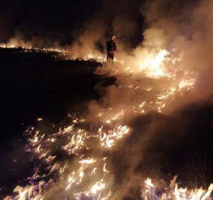 Поки ви готуєтесь до сну, вогнеборці Закарпаття приборкують пожежі внаслідок підпалів