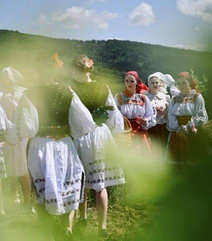 На Берегівщині відбувся унікальний арт-проєкт «Виноградна лоза» (фото)